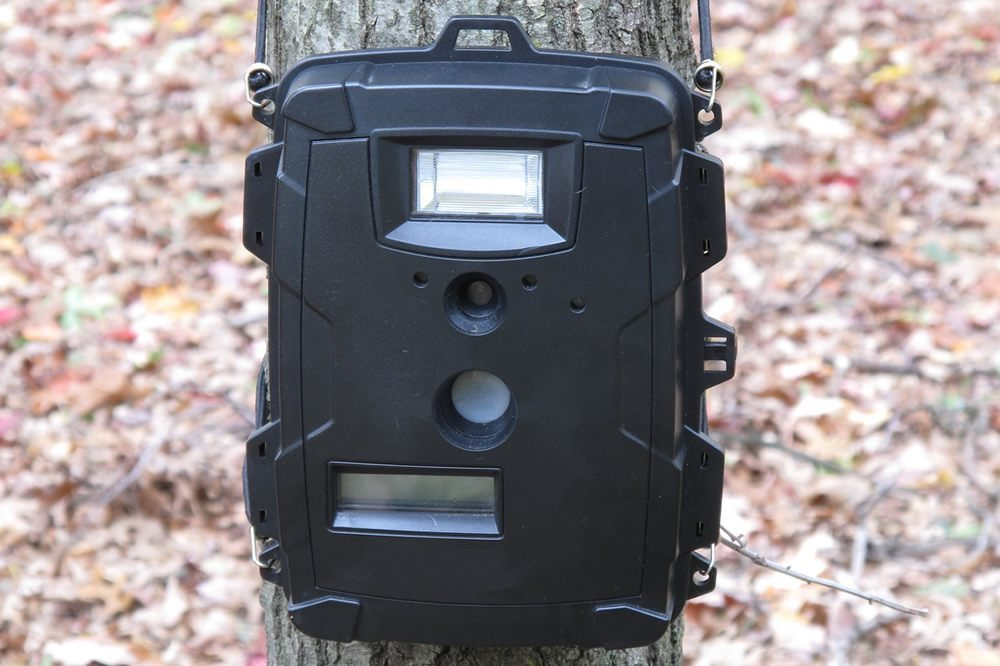 Cheapest Trail Camera