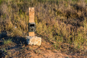 BlazeVideo Game Camera: The Best Camera for Hunting?