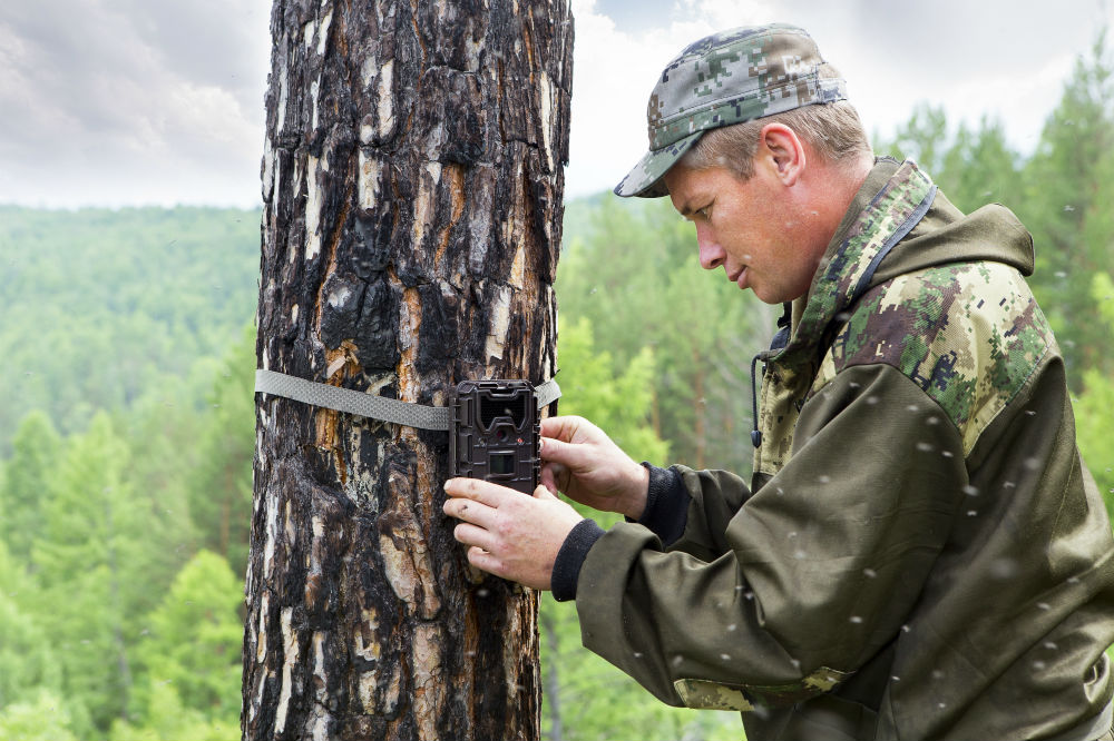 How Do Wireless Trail Cameras Work